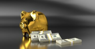 Cerco prestiti